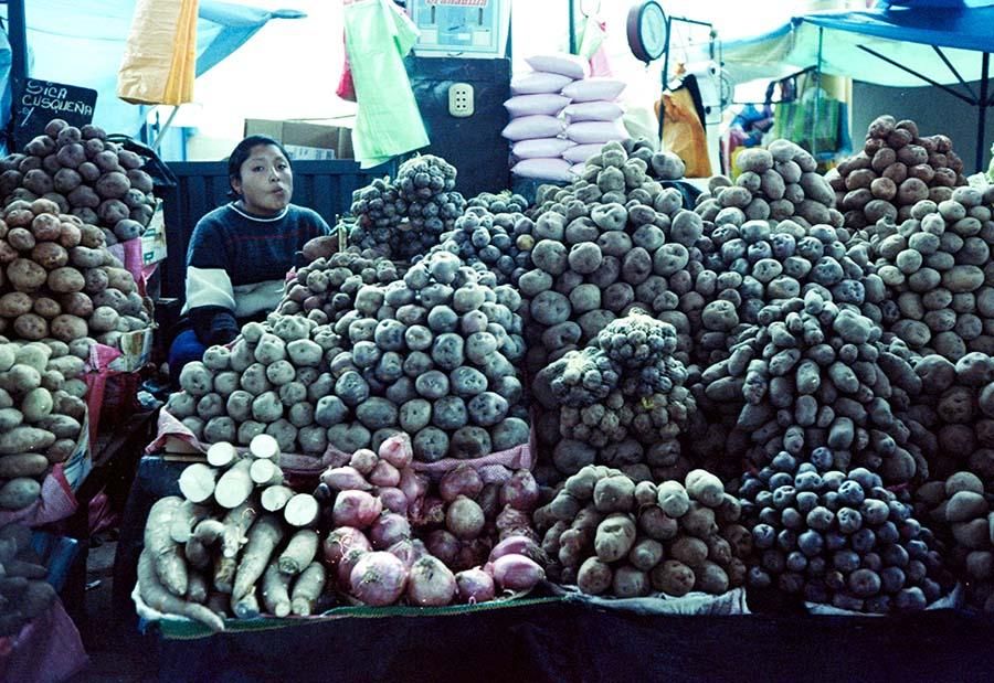 Mrs. Potato head · Cusco, Perù